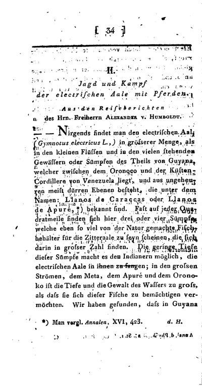 Humboldt, Alexander von: Jagd und Kampf der electrischen Aale mit Pferden. In: Annalen der Physik, 25 (1807), S. 34-43.