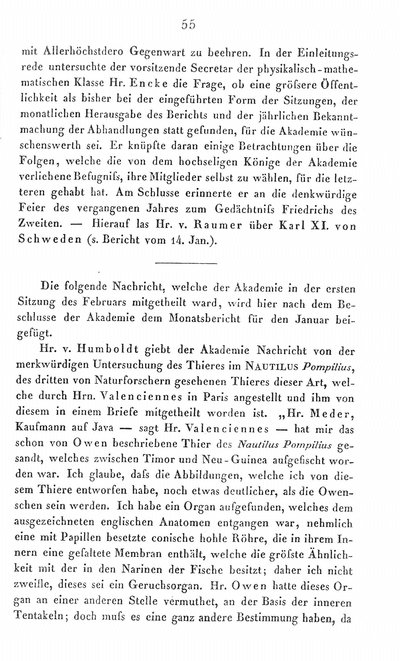 Humboldt, Alexander von: [Bericht über das Thier des Nautilus pompilius]. In: Bericht über die zur Bekanntmachung geeigneten Verhandlungen der Königl. Preuss. Akademie der Wissenschaften zu Berlin. Berlin, 1841, S. 55-59.