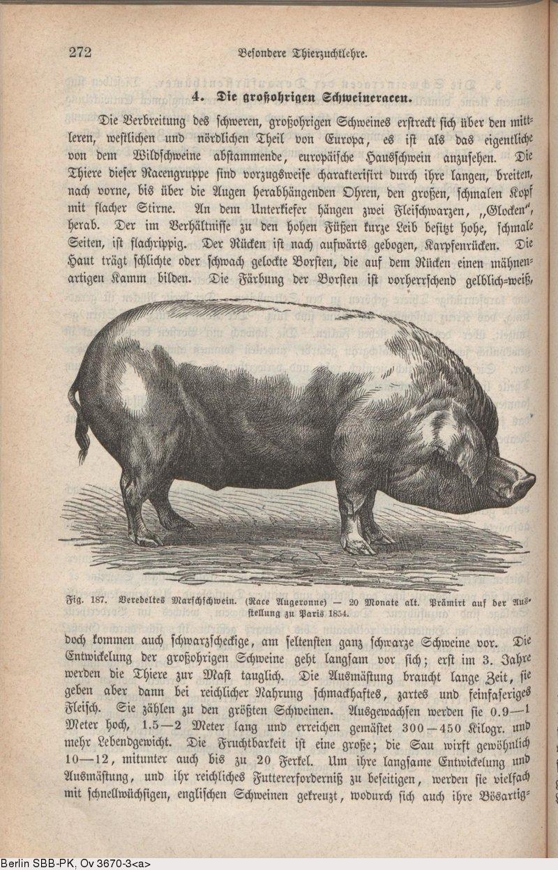 Deutsches Textarchiv – Krafft, Guido: Lehrbuch der Landwirthschaft ...